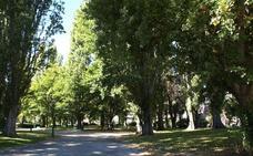 Imagina llevará al Pleno que Parques y Jardines pase a Medio Ambiente