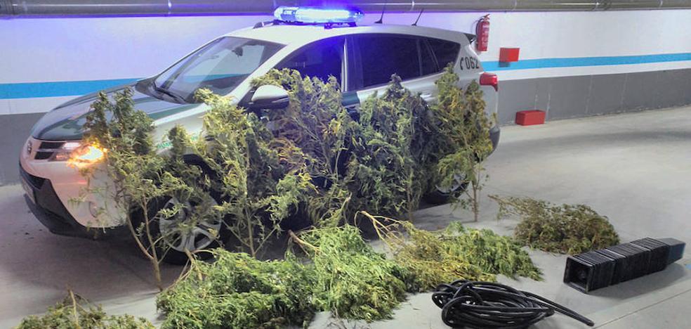 La Guardia Civil interviene 325 kilos de marihuana en los últimos meses