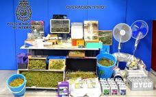 Incautados 9 kilos de droga, preparada para su distribución