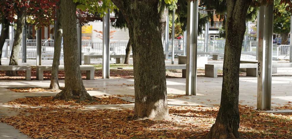 La Policía busca en Palencia a un agresor sexual que actúa los fines de semana