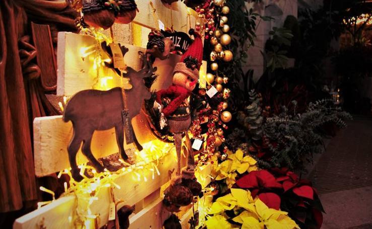 Muestra Floral de Navidad