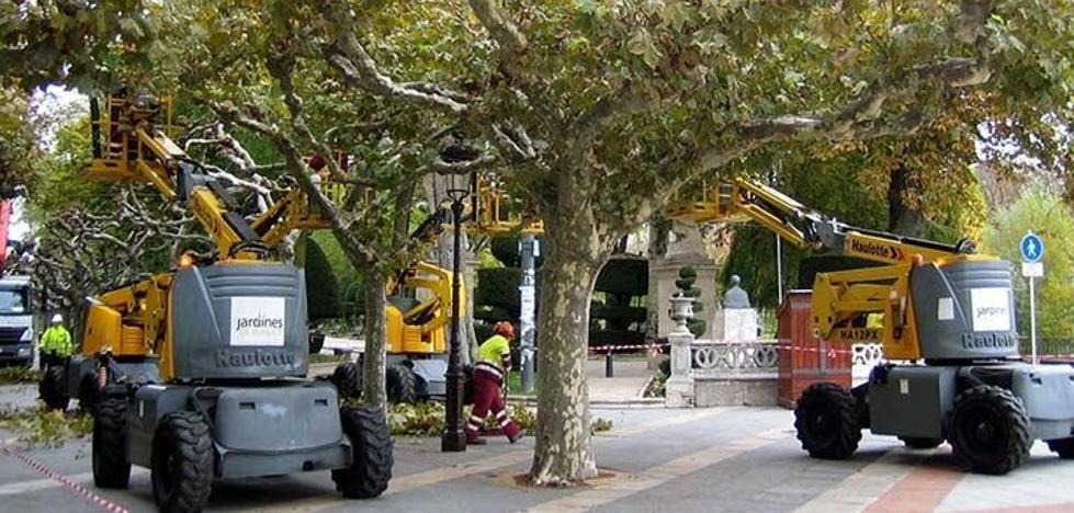 Licitan por 4,8 millones el contrato de jardines y arbolado urbano