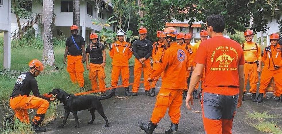 El GREM forma a la Unidad Canina de Panamá, que quiere ser un referente centroamericano