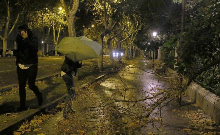 Los efectos de la borrasca 'Ana' en Valladolid