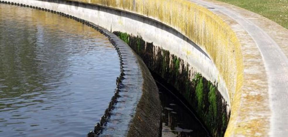 Imagina se «desmarca» de la recusación del informe sobre el ciclo integral del agua de Roa
