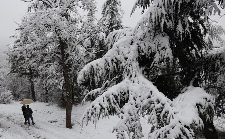 La nieve cubre de blanco Burgos
