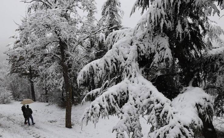 La nieve viste de blanco Burgos