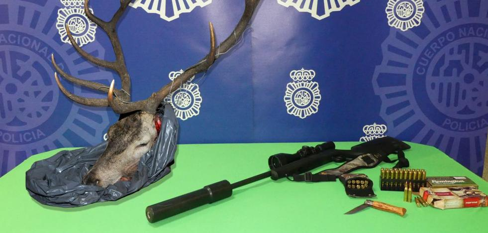 Sorprendidos con la cabeza de un ciervo y un arma en el maletero tras robar en Decathlon