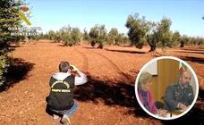 Detenidas 19 personas por hurtar y comprar 46 toneladas de aceitunas robadas en Badajoz