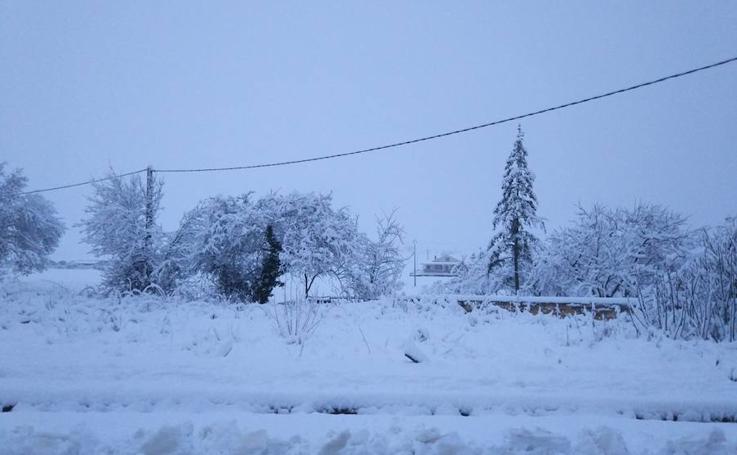 Estampas nevadas en la provincia de Burgos