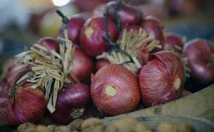 Investigadores de la UBU participan en un proyecto para producir cebollas y pimientos más saludables