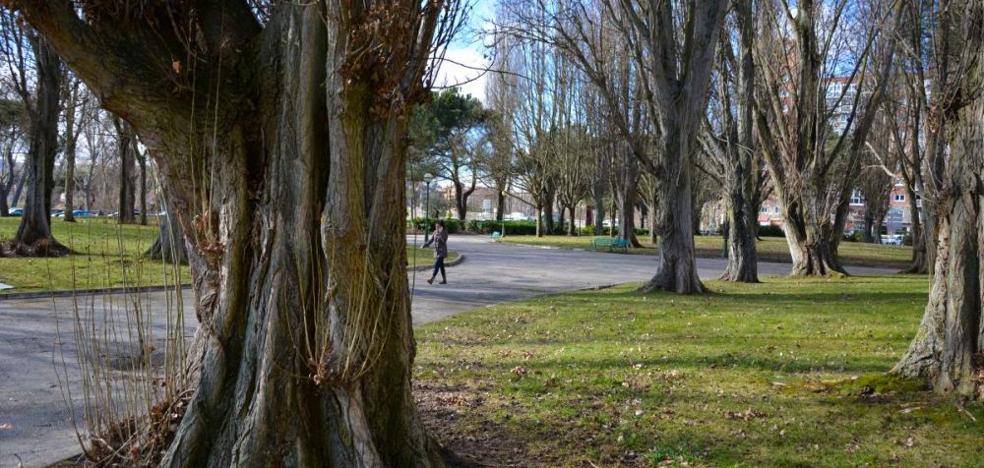 Los arquitectos piden declarar el Parque de la Cruz Roja «jardín histórico»