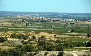 UCCL rechaza los aumentos de las cuotas de los viticultores en la Ribera del Duero