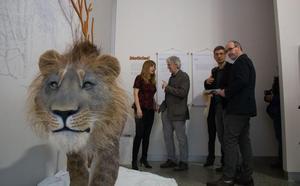 El esqueleto completo de un león de las cavernas, Pieza Única del Museo de la Evolución