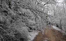 La semana comenzará con nieve en las zonas montañosas de Burgos