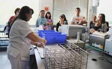El banco regional de leche materna incorpora un punto de distribución en la capital