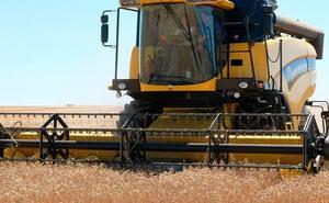 Las predicciones apuntan a una cosecha de 1,5 millones de toneladas en la provincia