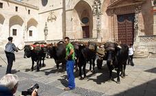 Un centenario para exaltar los oficios que hicieron posible la Catedral de Burgos