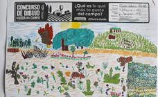 Trabajos de 3º de Primaria en la modalidad de dibujo del II Concurso de Dibujo y Cómic 'La vida del campo'