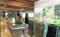 El enoturismo crece el 11% en Castilla y León y se consolida con medio millón de visitantes