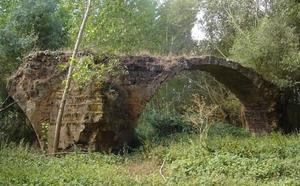 EL PATRIMONIO BURGALÉS EN PELIGRO VII: PUENTE DE SAN PEDRO DE ROYALES