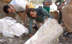 Se multiplican los indicios de la existencia de más de un dinosaurio saurópodo en Torrelara