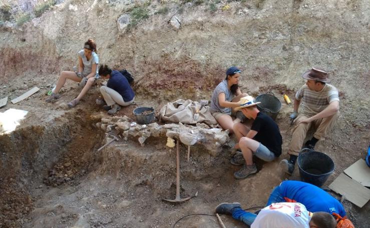 Balance de la Campaña 2018 de excavaciones en el yacimiento de restos de dinosaurios Valdepalazuelos-Tenadas del Carrascal de Torrelara