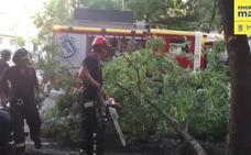 Un conductor bebido causa tres heridos tras arrasar una terraza en Madrid