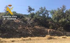 Identifican al presunto autor de incendio forestal de Portilla-Bozoo