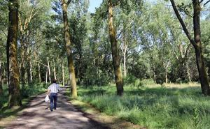 Burgos invertirá 1 millón de euros en mejorar 1.000 hectáreas del Cinturón Verde hasta 2022