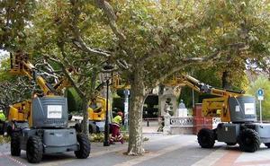 Blasco confía en que el nuevo contrato de jardines llegue antes del 31 de octubre