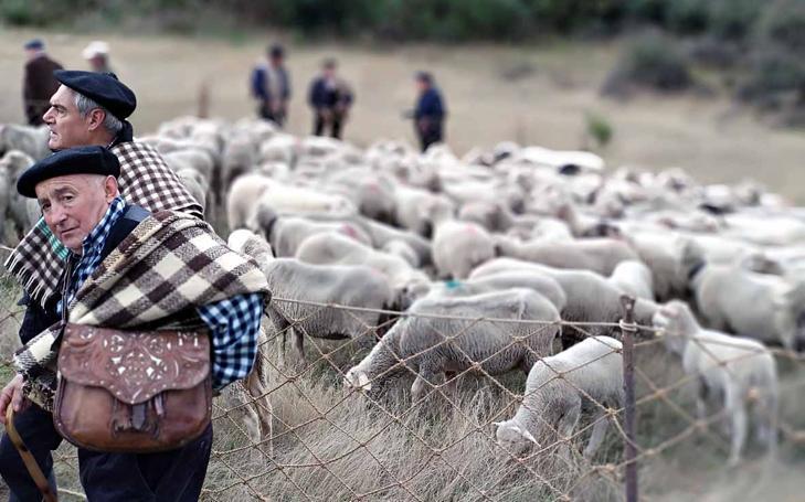 Fiesta de la 'Despedida de los pastores' en Tolbaños de Arriba