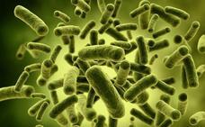Tres asociaciones científicas se unen para luchar contra las bacterias ultrarresistentes