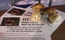 Quintanar de la Sierra celebra sus III Jornadas Micológicas este fin de semana