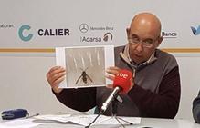 Capturado un ejemplar de vespa velutina entre las provincias de Salamanca y Cáceres