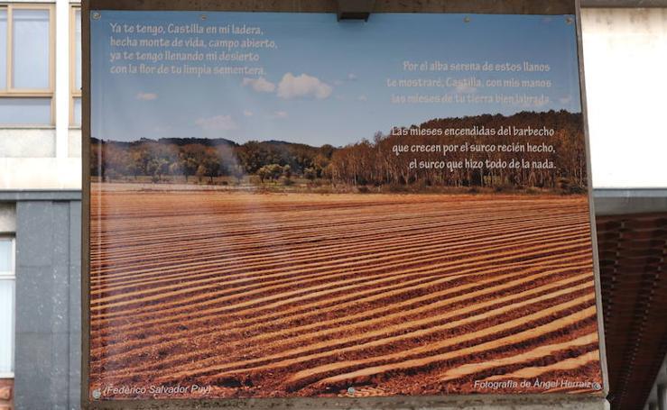 Homenaje a poetas burgaleses