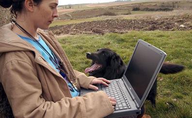 Un total de 22.892 habitantes, de 54 pueblos burgaleses, se beneficiarán de ayudas para la extensión de Internet al medio rural