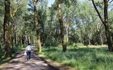 Burgos incorpora cuatro nuevas rutas al cinturón verde de la ciudad