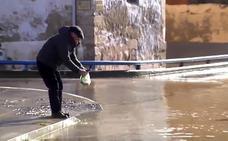 La riada deja peces por las calles de Miranda