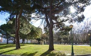Medio Ambiente inicia los trámites para talar los árboles dañados del Parque de la Cruz Roja