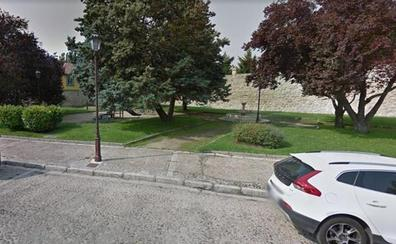 PCAS-TC critica a Lacalle por cometer un «arboricidio» en la calle Alfonso VIII