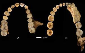 El CENIEH participa en un estudio que revela nuevas perspectivas sobre el poblamiento homo sapiens en China