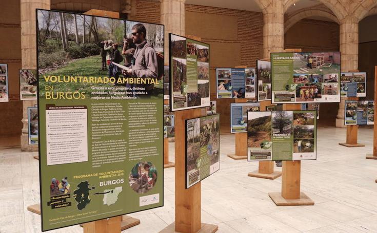 La exposición sobre Voluntariado Ambiental de la Casa del Cordón, en imágenes