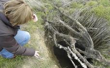 Autorizan la excavación de una fosa común en Medina del Campo con 42 represaliados