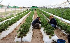 Las trabajadoras cobran de media 4.180 euros menos al año que los hombres