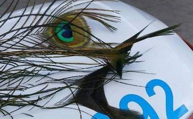 Denunciado por arrancar plumas a los pavos reales del Campo Grande de Valladolid para decorar su casa