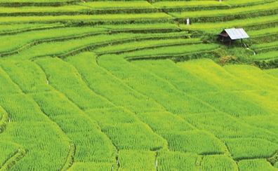 Mae Hong Son, el paraíso tailandés protegido por la niebla