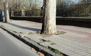 La gestión municipal de las calles y de las infraestructuras, lo que más preocupa a los burgaleses, solo por detrás del paro