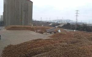 Azucarera finaliza la campaña remolachera en Miranda con 335.000 toneladas de remolacha molturada