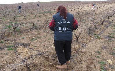 Cáritas desarrolla en la Ribera un proyecto de apoyo al empleo